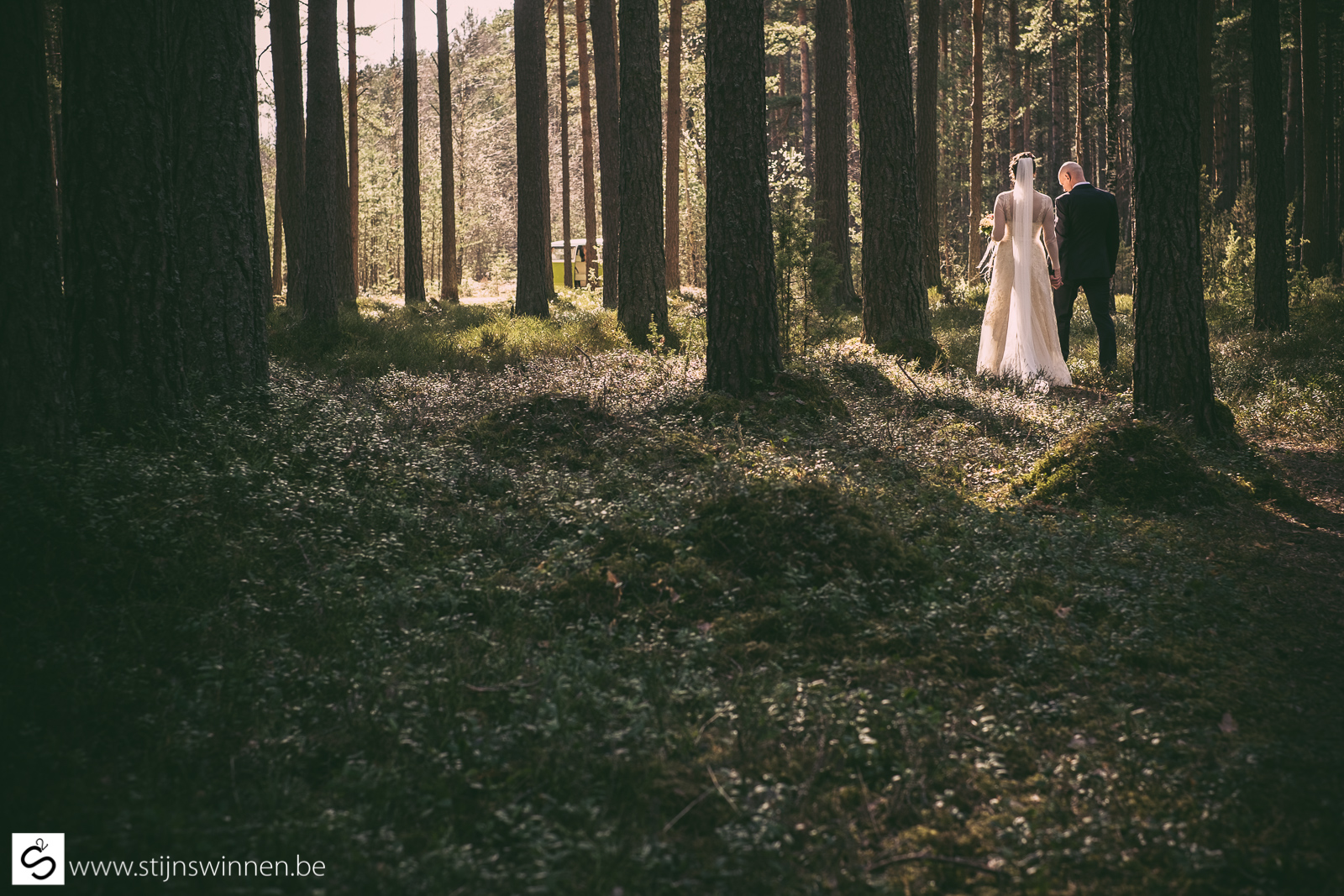 Wedding of Ieva and Janis - forest shoot in Lavtvia